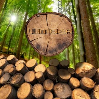 Timber_IS